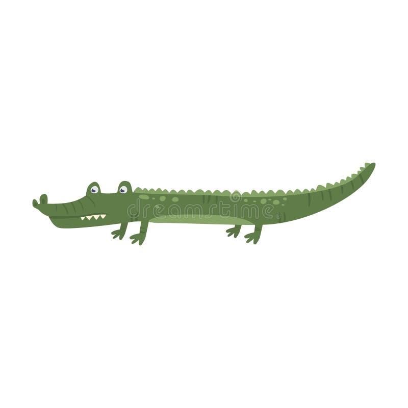 Lustiger Karikaturalligatorkrokodilcharakter Grünes Tier mit den scharfen Zähnen Tropisches Wasserreptil Zoothema flach stock abbildung