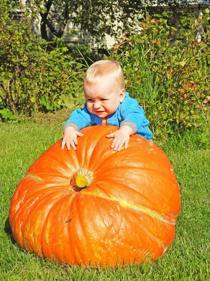 Lustiger lächelnder Junge mit großem orange Kürbis stockbild