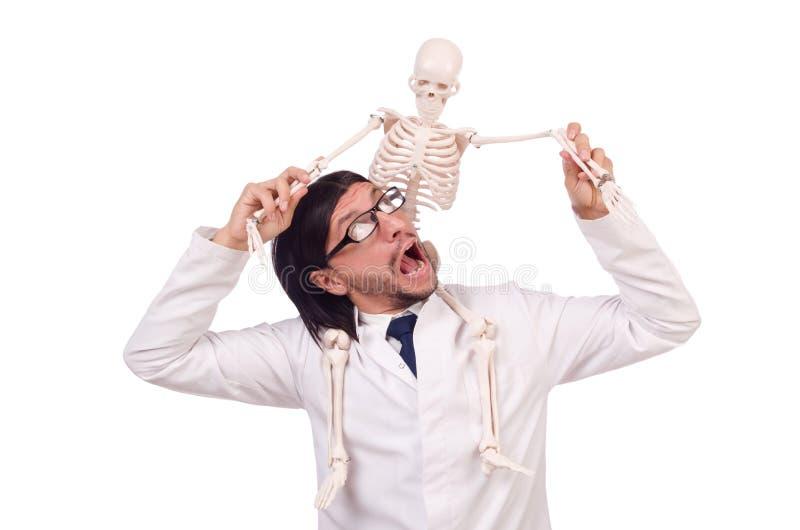 Lustiger Lehrer mit dem Skelett lokalisiert lizenzfreies stockfoto