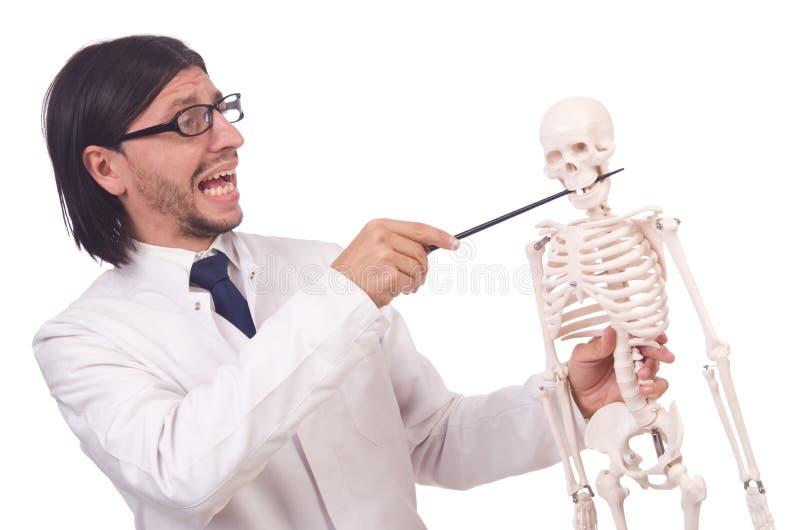 Lustiger Lehrer mit dem Skelett lokalisiert lizenzfreie stockfotos