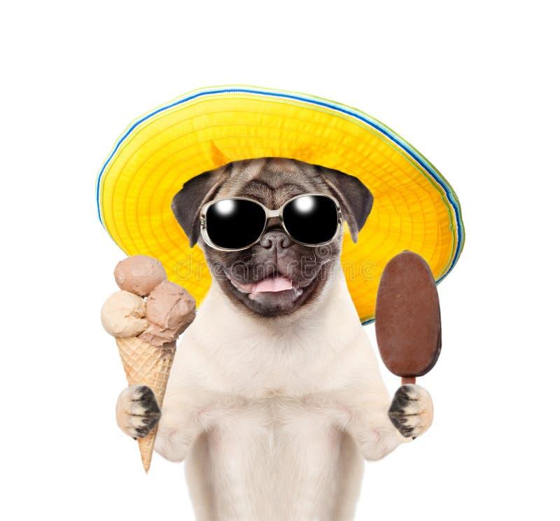 Lustiger Sommerhund in der Sonnenbrille und in Hut, die Eiscreme halten Getrennt auf wei?em Hintergrund stockbild
