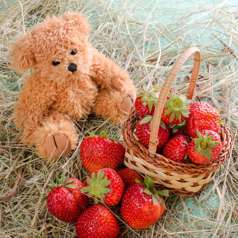 Lustiger Teddybär sitzt auf einem Heu nahe einem Korb mit reifem fre lizenzfreies stockfoto