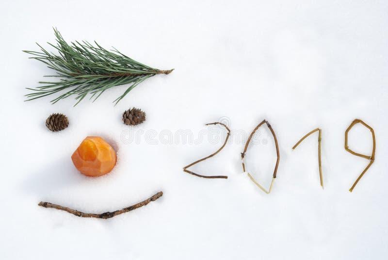 Lustiges Gesicht des neuen Jahres 2019 lizenzfreies stockfoto