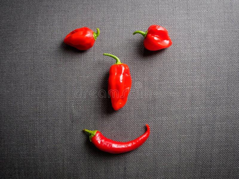 Lustiges Gesicht gemacht von den Paprikafrüchten stockfoto