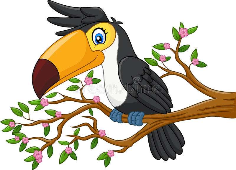 Lustiges Tukan der Karikatur auf einem Baumast vektor abbildung