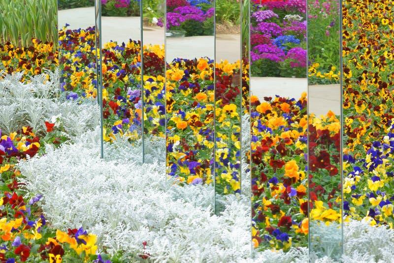 Lustra w ogródzie zdjęcie royalty free