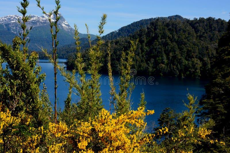 Lustrzany jezioro, sposób Siedem jezior, Bariloche zdjęcie royalty free