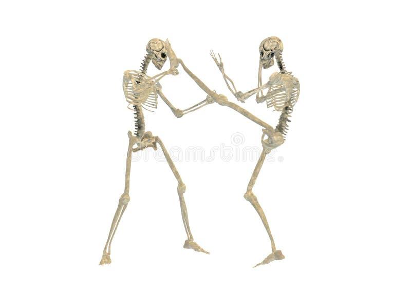 Luta de esqueleto ilustração stock