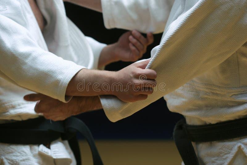 Luta do judo fotos de stock