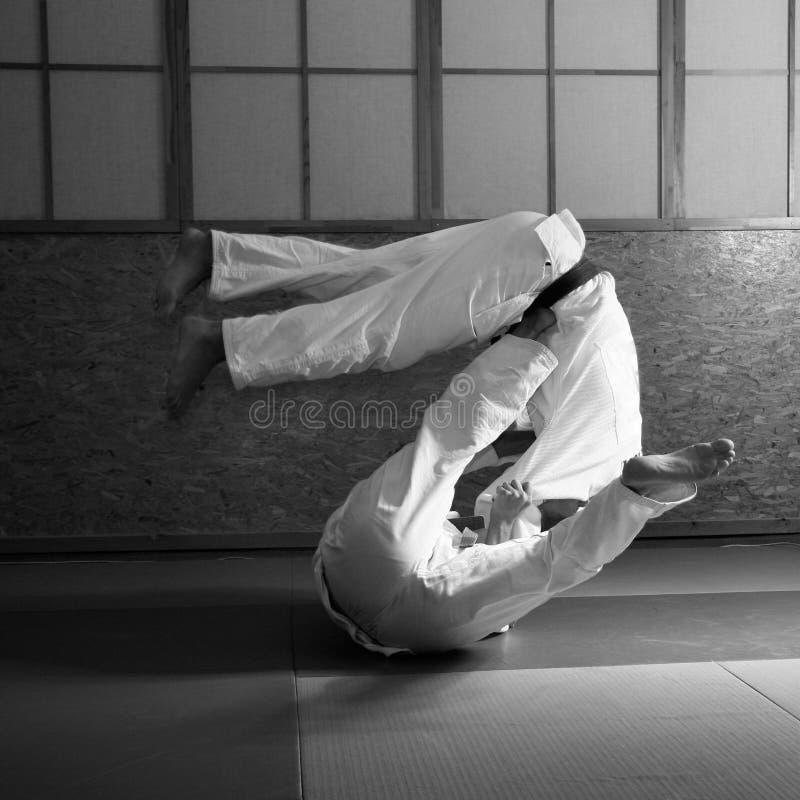 Luta do judo fotografia de stock