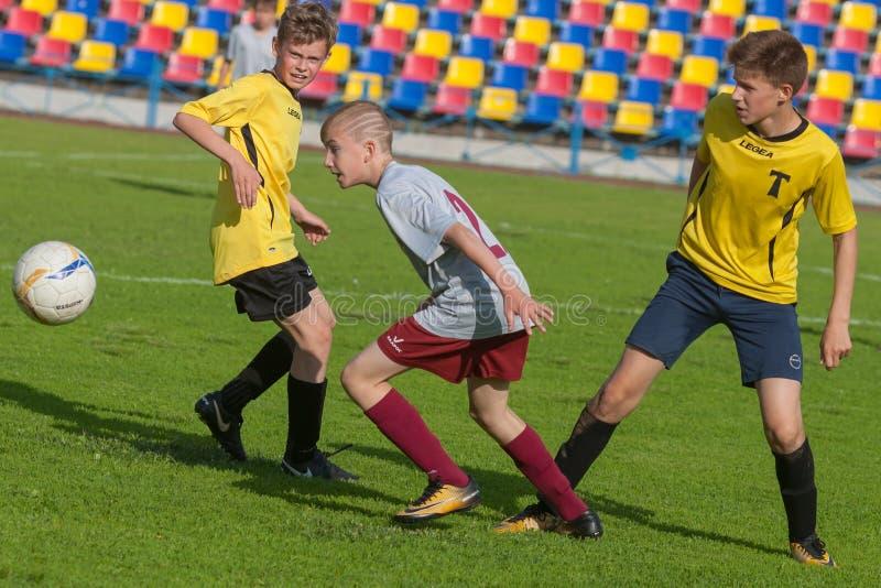Luta dos jogadores de futebol do futebol fotografia de stock royalty free
