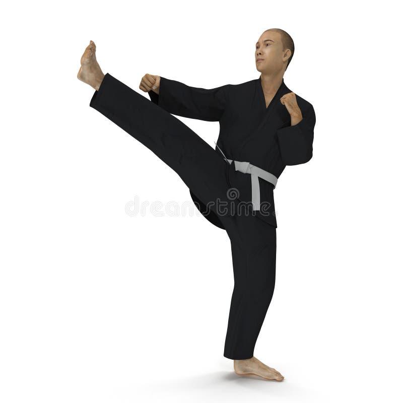 Lutador do karaté no quimono preto isolado no branco ilustração 3D ilustração royalty free
