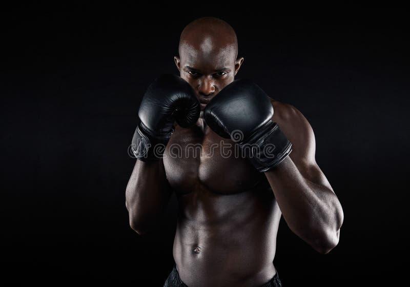 Lutador profissional pronto para a luta foto de stock royalty free