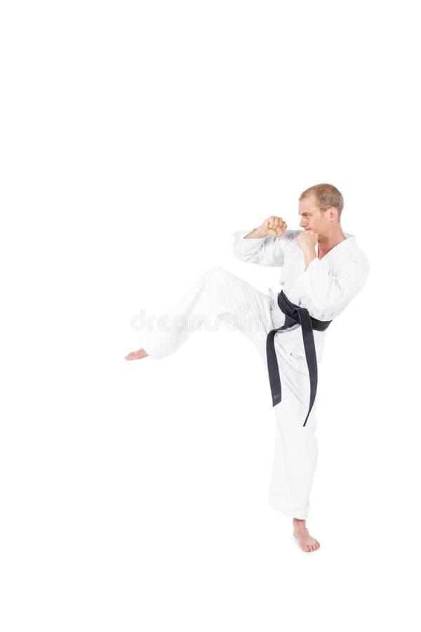 Lutador que executa a posição do karaté imagem de stock