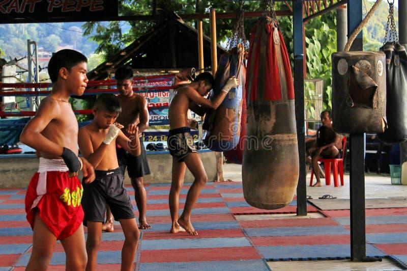 Lutadores novos de Mao Thai durante o treinamento na classe fotografia de stock royalty free