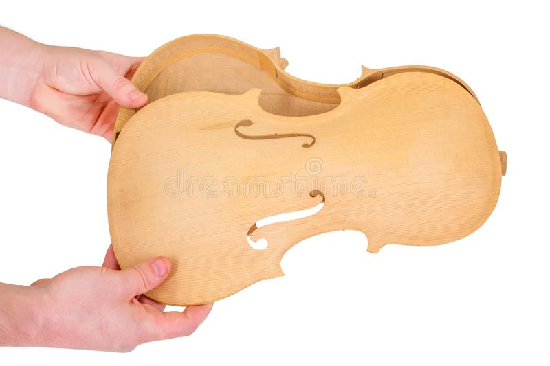 Assamble the violin parts. Luthier showing assemble moment of the violin back and belly royalty free stock image