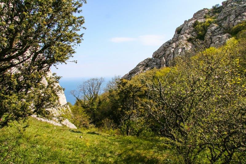 Lutningarna av bergen nära byn av Laspi arkivbild