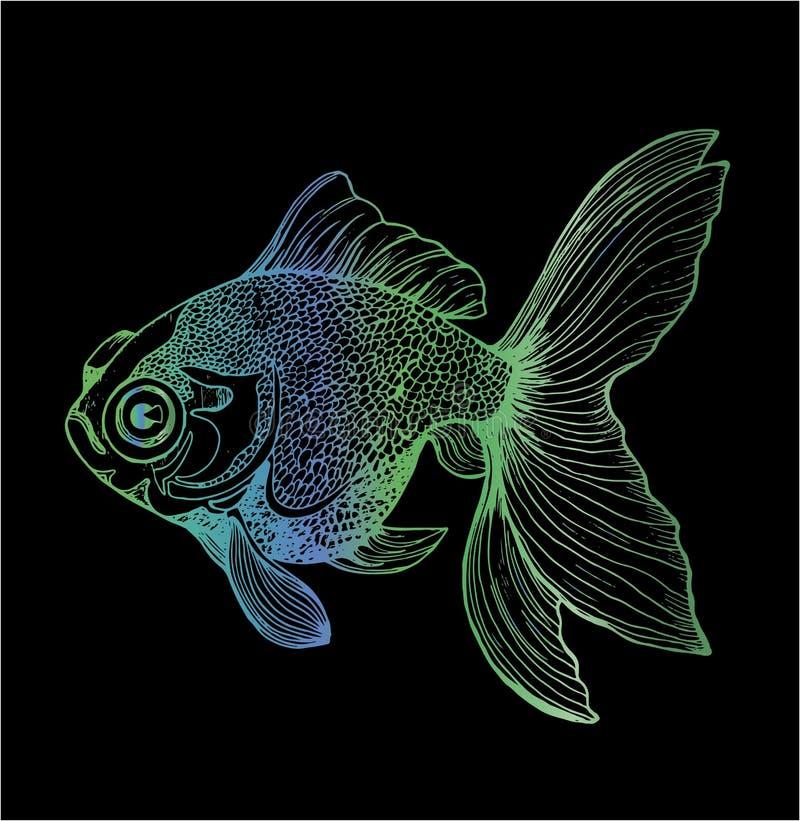 Lutningillustration av en fisk Svartvit karpteckning vektor illustrationer