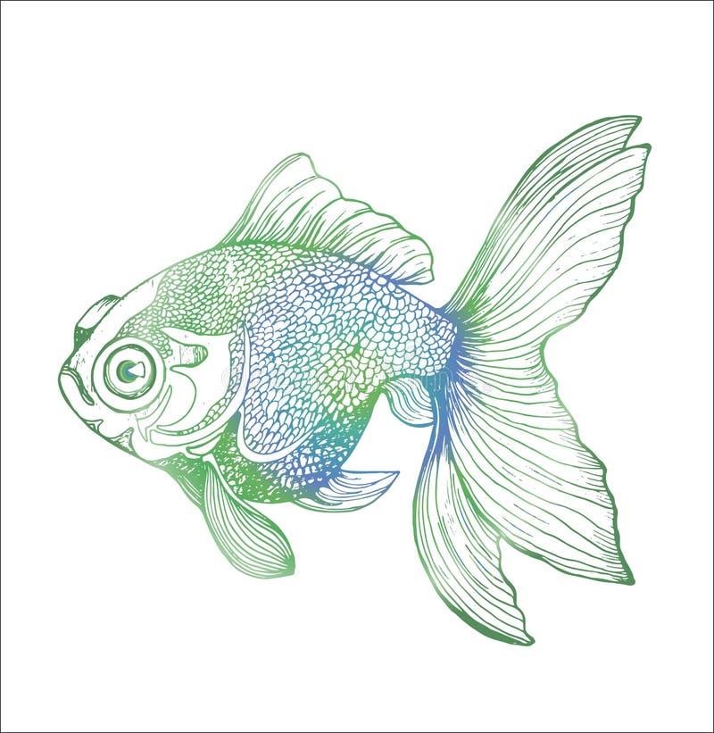 Lutningillustration av en fisk Svartvit karpteckning royaltyfri illustrationer