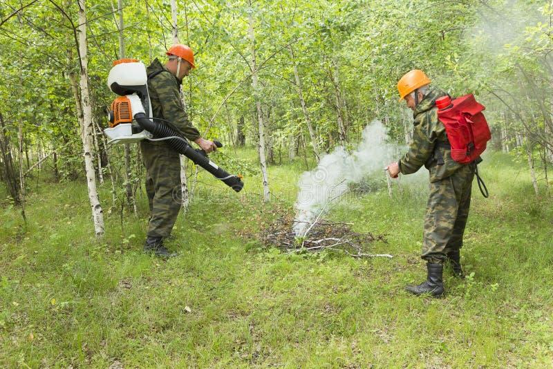 Lutte contre l'incendie dans la forêt images libres de droits