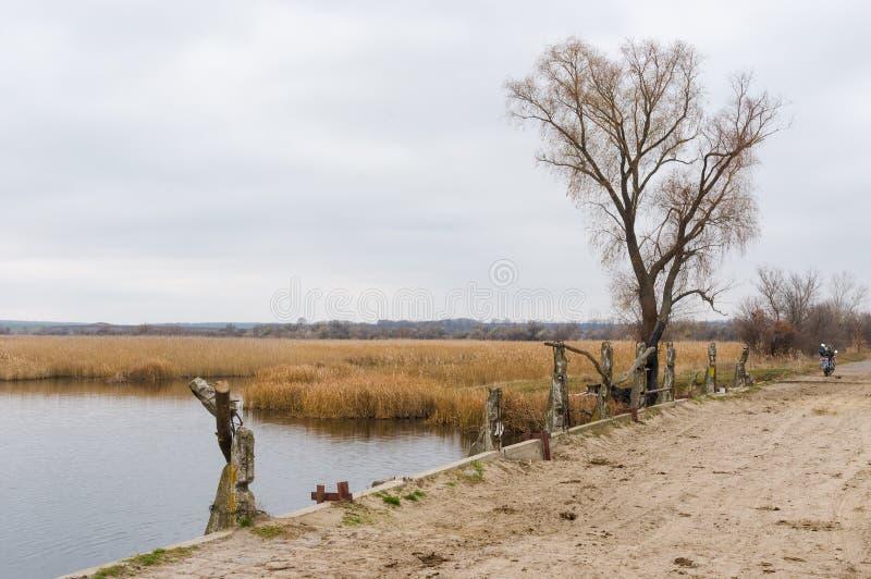 Lutumnal landskap i centralt ukrainskt område royaltyfri fotografi