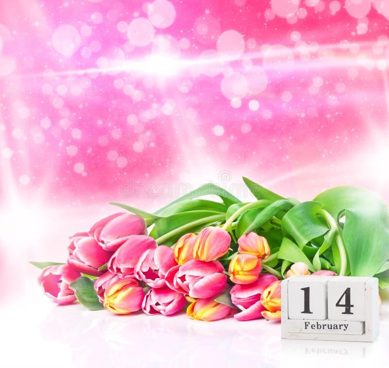 Luty 14th, różowi żółci tulipany dla walentynki ` s dnia fotografia royalty free
