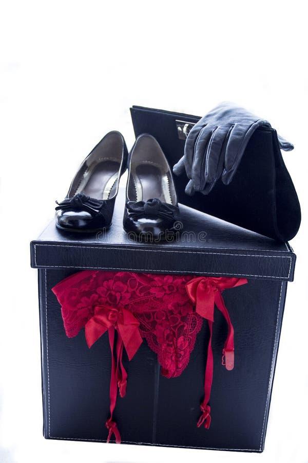 Luvas da cuecas das sapatas das mulheres e bolsa 3 imagem de stock