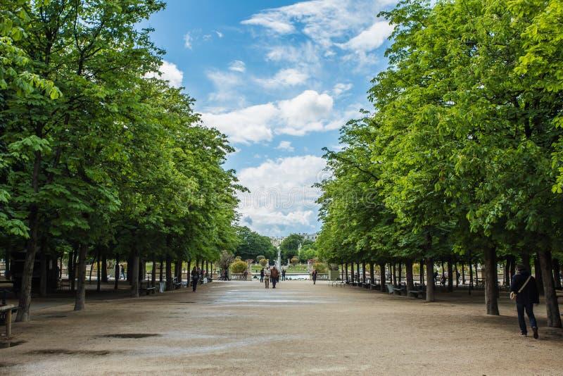 Luxembourg arbeta i trädgården (Jardin du Luxembourg) i Paris arkivfoton