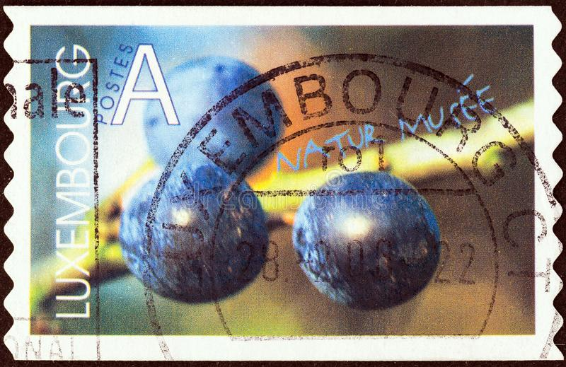 LUXEMBOURG - CIRCA 2002: A stamp printed in Luxembourg shows Blackthorn berries, circa 2002. stock photography