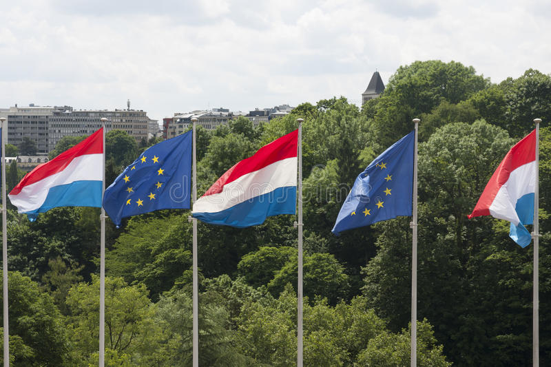 Luxembourg and EU flags. Several Luxembourg and European Union & x28;EU& x29; flags flying side by side in the wind stock image