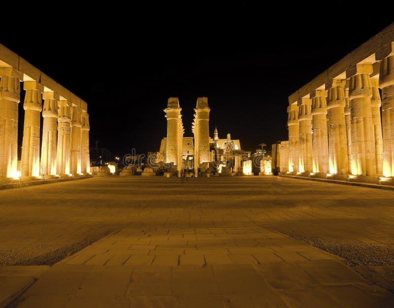 Luxor-Tempel nachts stockfotos