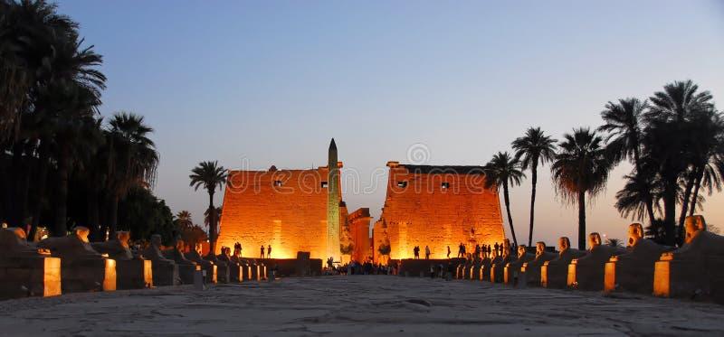 Luxor-Tempel nachts lizenzfreie stockfotos