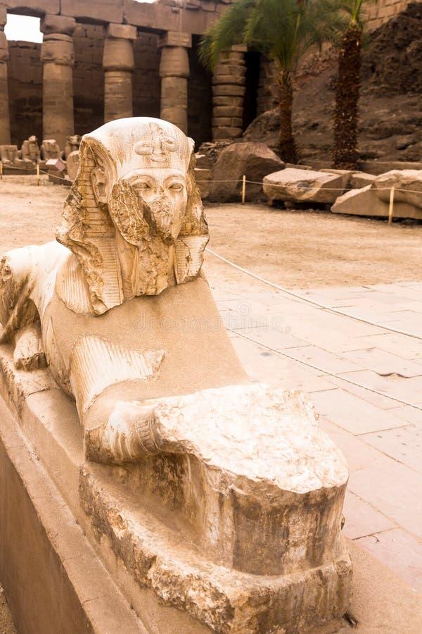 Luxor Temple, Karnak, Египет стоковое фото rf
