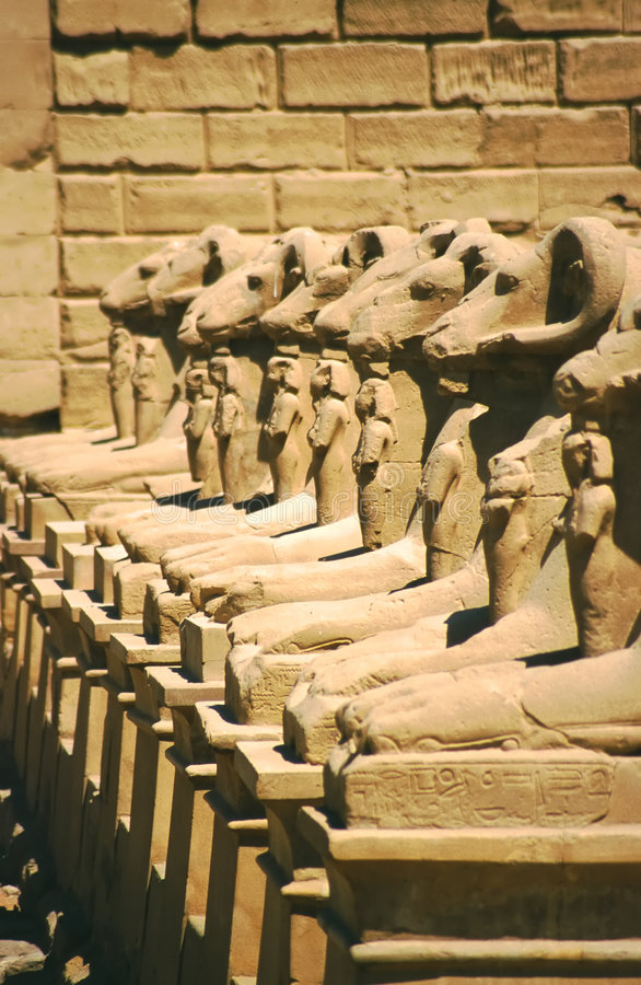Luxor temple ram heads, Egypt stock photo