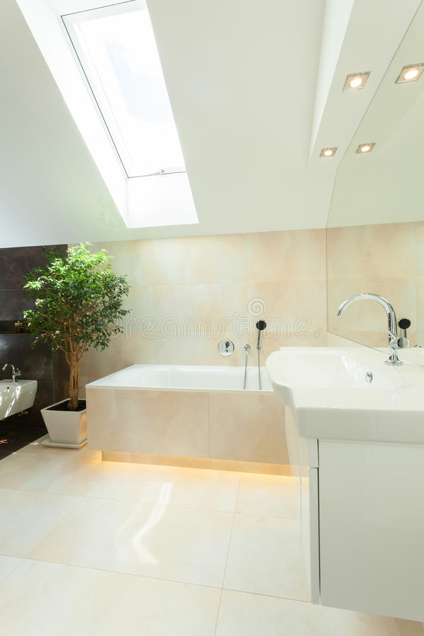 Luxueuze badkamers in de zolder stock foto
