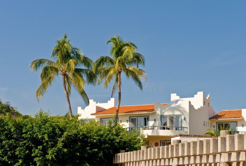 Luxueuze tropische Flat stock afbeeldingen