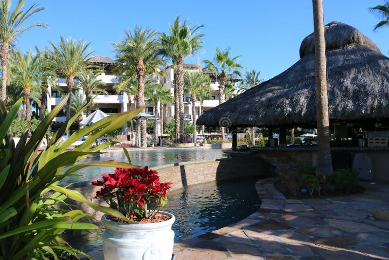 Luxuriöser spanischer Artpooljacuzzi heiß mit Luxuswasserfunktionsbrunnen am herrlichen Landhaus mit Meerblick in Los Cabos Mexik stockfoto