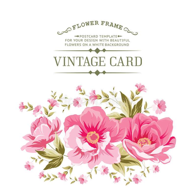 Luxurious color peony pattern. royalty free illustration