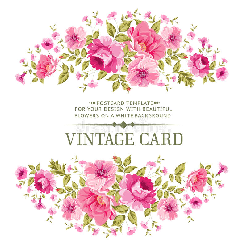 Luxurious color rose card. royalty free illustration