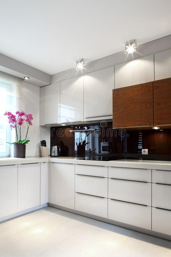 Download Luxurious modern kitchen stock photo. Image of appliances - 35521776