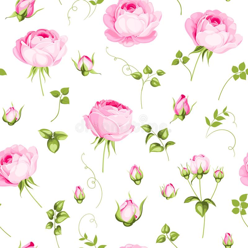 Luxurious rose wallapaper. Luxurious rose wallapaper in vintage style. Seamless pattern of blooming roses for floral wallpaper. Pink romantic theme. Vector royalty free illustration