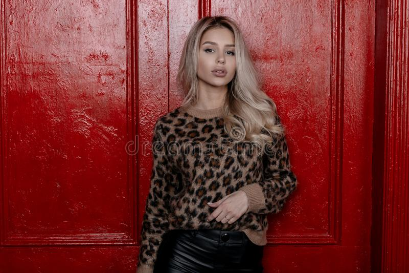 Luxurious sensual young woman in a beautiful fashionable leopard sweater in vintage black leather pants posing in a studio royalty free stock photography