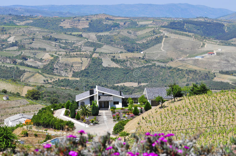 Luxurious winery