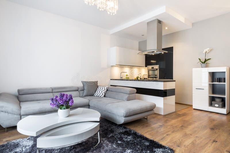 Luxurrywoonkamer met keukengebied stock afbeelding