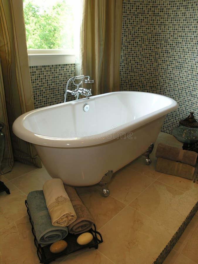 Download Luxury 6 - Bathroom 1 stock image. Image of bathtub, interior - 2979429