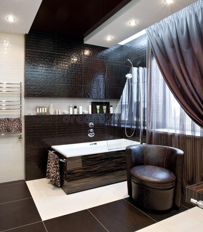 Download Luxury bathroom interior stock image. Image of house - 19104175
