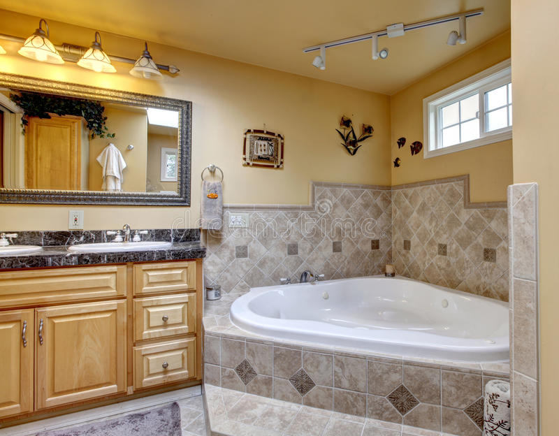 Download Luxury Bathroom With Jacuzzi Style Bath Tub Stone Floor And Bl Stock Photo
