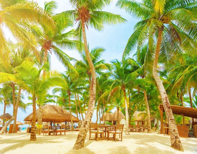 Luxury beach resort stock image