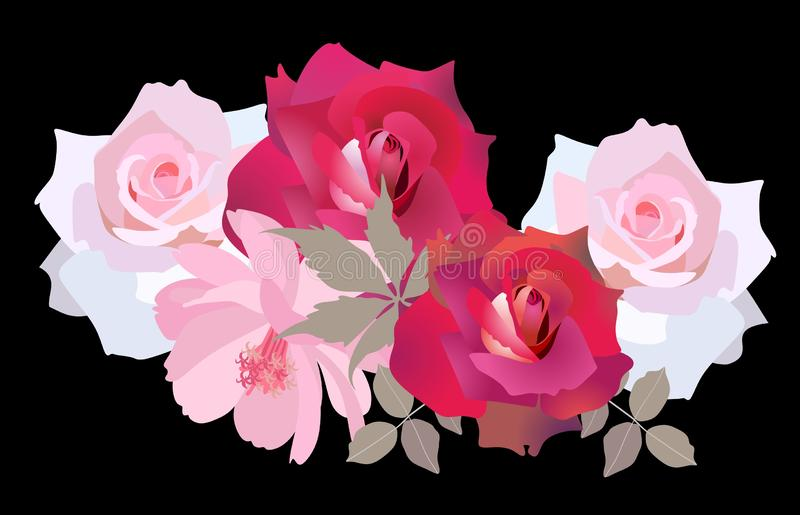 Luxury bouquet of roses and cosmos flowers isolated on black background in vector. Bunner, flyer, greeting or invitation card. Perfect design stock illustration
