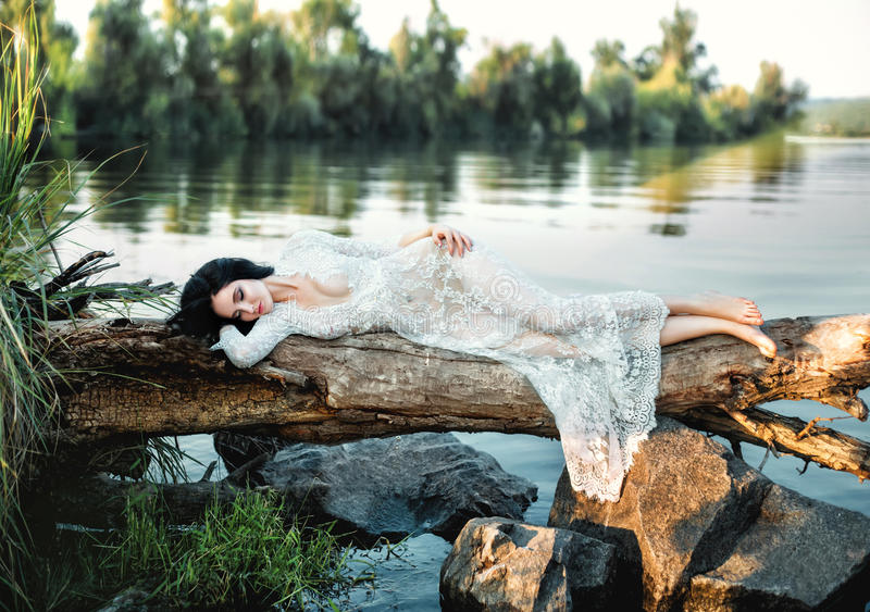 Luxury brunette in white dress gracefully lies on a log royalty free stock photo